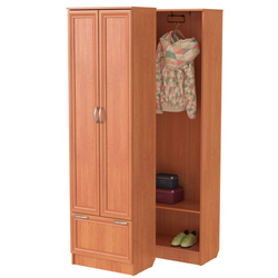 Шкаф для прихожей ШП-03 [CLONE]